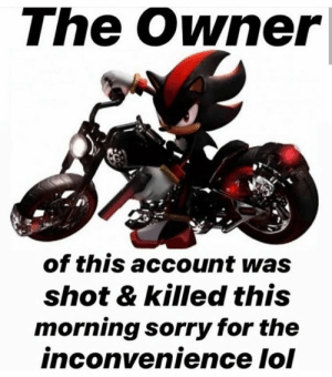 : The Owner|  of this account was  shot & killed this  morning sorry for the  inconvenience lol