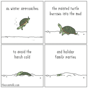 'tis the season: the painted turtle  burrows into the mud  as winter approaches  to avoid the  harsh cold  and holiday  family parties  theycantalk.com 'tis the season