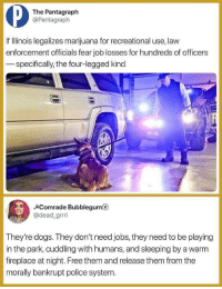 Dogs, Fucking, and Police: The Pantagraph  @Pantagraph  If IlIlinois legalizes marijuana for recreational use, law  enforcement officials fear job losses for hundreds of officers  specifically, the four-legged kind  Comrade Bubblegum  @dead_grrrl  They're dogs. They don't need jobs, they need to be playing  in the park, cuddling with humans, and sleeping by a warm  fireplace at night. Free them and release them from the  morally bankrupt police system. weedbrownie: everyone with fucking sense: hey plz legalize maryjuana and release the black people who are jailed over it capitalistic hellscape: mmmmnooo kant dew that fdskhkjfh everyone with fucking sense: uh why the fuck not? capitalistic hellscape: hhrnnngngghhhh uhmmmm …. THE DOGS NEED JOBS CANT TAEK AWAY DOG JAWBS HecKin PUppER needS WeRK