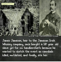 Irish, Memes, and Girl: The Paranormal Guide  James Jameson, heir to the Jameson Irish  Whiskey company, once bought a 10 year old  slave girl for six handkerchiefs because he  wanted to sketch the event as cannibals  killed, mutilated, and finally, ate her. People have issues ~Matt