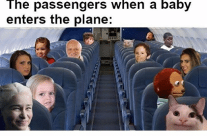 Passengers: The passengers when a baby  enters the plane: