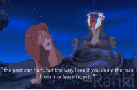 The Lion King: the past can hurt, but the way I see it you can either run  Rafiki  from it or learn from it The Lion King