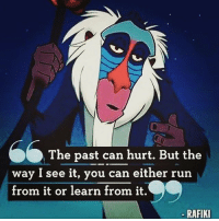 Memes, Run, and Goodvibes: The past can hurt. But the  way I see it, you can either run  from it or learn from it.  O  RAFIKI thegoodquote goodvibes 🌻