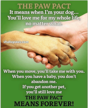 Life, Love, and Memes: THE PAW PACT  It means when I'm your dog...  You'll love me for my whole life  no matter what  shakepaws.com  When you move, you'll take me with you.  When you have a baby, you don't  abandon me.  If you get another pet,  you'll still love me  THE PAW PACT  MEANS FOREVER! Fosters needed in SoCal and Western Oregon. Apply to foster using this link: http://www.emailmeform.com/builder/form/j1k8efNbc6PpcyEDnezdZeC