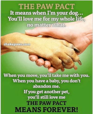 Life, Love, and Memes: THE PAW PACT  It means when I'm your dog...  You'll love me for my whole life  no matter what  ShakepawS COm  When you move, you'll take me with you.  When you have a baby, you don't  abandon me.  If you get another pet,  you'll still love me  THE PAW PACT  MEANS FOREVER! Everyone who gets a dog should have to sign this  💔❤️🐾