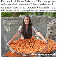 "Memes, Pakistan, and 🤖: The people of Hunza Valley are ""The only people  in the world without cancer"", because they use &  eat apricot seeds, which contains Vitamin B17, that  kills cancer cells & strengthens the immune system  FBAYT Health With Andishe  @beauty secretsforall  eauty secretsforall via @beautysecretsforall ・・・ Did you guys know the people in the Hunza Valley (Pakistan) have the LOWEST rates of disease including cancer? Surely, other factors could have a link (like a diet low in saturated fats, refined sugars and processed food), but one thing for sure is that they eat lots of apricot seeds. Get this, apricot thrives here, and ✨Vitamin B17 ✨ is found in these bitter apricot seeds, known to kill cancer cells, and preventing them from growing. They also use apricot oil which is derived from the seed. Apricot seeds kill cancer cells and strengthen your immune system! Tag your friends ✨💋 beautysecretsforall Edit: do not consume more than 9 a day."