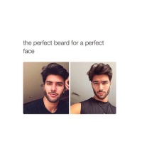 Beard, Love, and Girl Memes: the perfect beard for a perfect  face i love @HOENEST 😚
