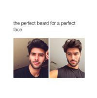 Beard, Lol, and True: the perfect beard for a perfect  face true lol cohmedy