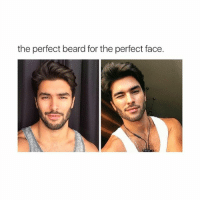 Beard, Wow, and Girl Memes: the perfect beard forthe perfect face wow