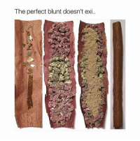 You better watch your mouth around here! 😂 Blunted 🔥🙌 @TheDailyChief420 - @InfamousKush👈 if you're looking for that new new 🔥😉: The perfect blunt doesn't exi.. You better watch your mouth around here! 😂 Blunted 🔥🙌 @TheDailyChief420 - @InfamousKush👈 if you're looking for that new new 🔥😉