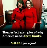 America, Memes, and 🤖: The perfect examples of why  America needs term limits.  SHARE if you agree!