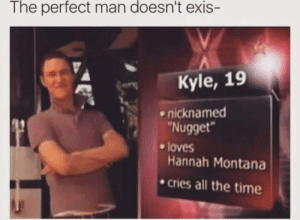 Memes, Hannah Montana, and Montana: The perfect man doesn't exis  Kyle, 19  .nicknamed  Nugget  loves  Hannah Montana  cries all the time Nugget. via /r/memes https://ift.tt/2Pt0Ymp