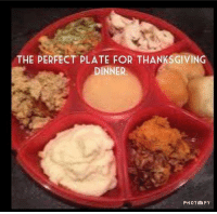 Thanksgiving: THE PERFECT PLATE FOR THANKSGIVING  DINNER  PHOTO FY