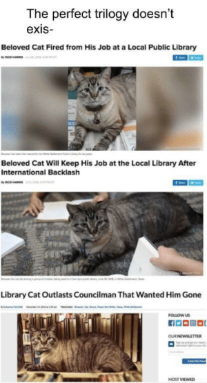 Will Keep: The perfect trilogy doesn't  exis  Beloved Cat Fired from His Job at a Local Public Library  ax  Beloved Cat Will Keep His Job at the Local Library After  International Backlash  Library Cat Outlasts Councilman That Wanted Him Gone  FOLLOW US  OUR NEWSLETTER  MOST VIEWED