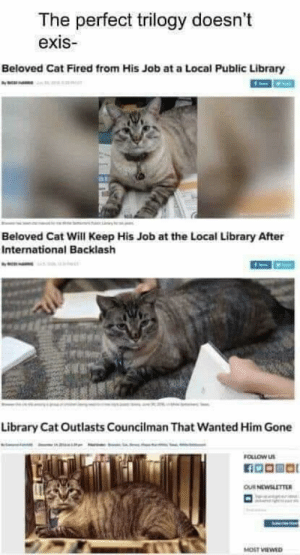 This is the kind of news I look for: The perfect trilogy doesn't  exis  Beloved Cat Fired from His Job at a Local Public Library  Beloved Cat Will Keep His Job at the Local Library After  International Backlash  Library Cat Outlasts Councilman That Wanted Him Gone  FOLLOW US  OUR NEWSLETTER  MOST VIEWED This is the kind of news I look for