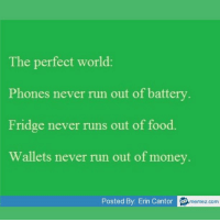 Memes, 🤖, and Perfect World: The perfect world  Phones never run out of battery  Fridge never runs out of food.  Wallets never run out of money.  Posted By: Erin Cantor  memez.com Simple things that would make the world perfect. Tag 3 friends that would agree!