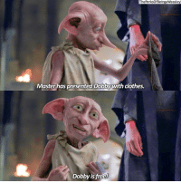 Memes, 🤖, and Clothing: The PerksOfBeingaWeasley  Master has presented Dobby with clothes.  Dobby is free! (1-2) double tap for Dobby 🙋🏼