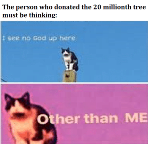 Mr. Beast would be proud by masturprocrastinator MORE MEMES: The person who donated the 20 millionth tree  must be thinking:  I see no God up here  Other than ME Mr. Beast would be proud by masturprocrastinator MORE MEMES