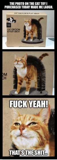 "Shit, Tumblr, and Blog: THE PHOTO ON THE CAT TOY  PURCHASED TODAY MADE ME LAUGH  CAT GROOM & PLAY ARCH  home  &Co  CAT GROOM  & PLAY ARCH  OM  THATS  THE SHIT. <p><a href=""https://novelty-gift-ideas.tumblr.com/post/169893126448/purrfect-arch-groom-toy"" class=""tumblr_blog"">novelty-gift-ideas</a>:</p><blockquote><p><b><a href=""https://awesomage.com/purrfect-arch-groom-toy/"">  Purrfect Arch Groom Toy</a><br/></b>  <br/></p></blockquote>"