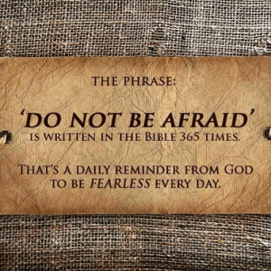 God, Life, and Memes: THE PHRASE  'DO NOT BE AFRAID  , IS WRITTEN IN THE BIBLE 365 TIMES  THAT'S A DAILY REMINDER FROM GOD  TO BE FEARLESS EVERY DAY. amen. When you become fearless, life becomes limitless. markiron faith lawofattraction observe noregrets fearless