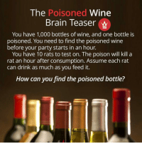 This One Is A Bit Tricky As It Requires Knowledge Of Binary Numbers, But Give It A Try! 🐀🍷 WSHHGames: The  Poisoned Wine  Brain Teaser W  You have 1,000 bottles of wine, and one bottle is  poisoned. You need to find the poisoned wine  before your party starts in an hour.  You have 10 rats to test on. The poison will kill a  rat an hour after consumption. Assume each rat  can drink as much as you feed it.  How can you find the poisoned bottle? This One Is A Bit Tricky As It Requires Knowledge Of Binary Numbers, But Give It A Try! 🐀🍷 WSHHGames