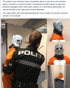 darthlampman:  Night's Watch arresting the Night King: The police have received many complaints about a man from the northern  region involved in criminal activity. Complaints include animal cruelty and  property damage (there have been reports of a wall being destroyed), as  well as threats to lay vast areas of land desolate.  Our night watch has now apprehended the man to deter any further criminal  activity on his behalf.  17589  POL  17589  183  15  04 darthlampman:  Night's Watch arresting the Night King