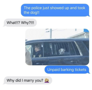 meirl by Blazingfire17 MORE MEMES: The police just showed up and took  the dog!  What!!? Why?!!!  Unpaid barking tickets  Why did I marry you? meirl by Blazingfire17 MORE MEMES