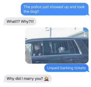 barking: The police just showed up and took  the dog!!  What!!? Why?!!!  Unpaid barking tickets  Why did I marry you?