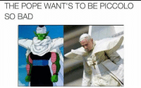 Piccolo: THE POPE WANT'S TO BE PICCOLO  SO BAD