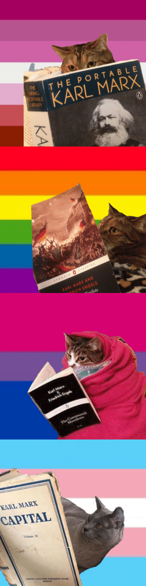 Cats, Tumblr, and Blog: THE PORTABLE  THE  VKING  YORTABLE  LERARY  KARL MARX  KA   CLASS CS  PENG UIN  KARL MARX AND  DRICH ENGELS  Manifesto   Kat Marx  Friedrich Engels  The Communiu  Manifemo   KARL MARX  CAPITAL  Volume IlI  TOR GN LAGUAGES PUBISHING HOUSE  MOSCOW prideflaglesbian: Cats reading Marx icons  Reblog/like if you save!