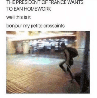 Tumblr, France, and Mean: THE PRESIDENT OF FRANCE WANTS  TO BAN HOMEWORK  well this is it  bonjour my petite crossaints i mean,, i dropped French as a subject but hon hon baguette eifFEL (bonjour honjour) FROMAGE