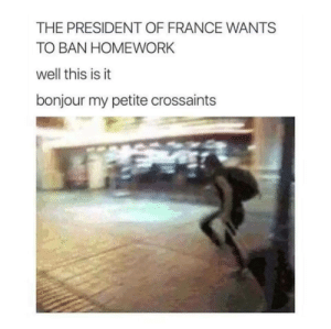 Dank, Memes, and Target: THE PRESIDENT OF FRANCE WANTS  TO BAN HOMEWORK  well this is it  bonjour my petite crossaints Meirl by Available_Subject MORE MEMES