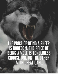 Tag someone 🔥 TheSuccessClub: THE PRICE OF BEING A SHEEP  IS BOREDOM. THE PRICE OF  BEING A WOLF IS LONELINESS  CHOOSE ONE OR THE OTHER  WITH GREAT CARE  The Success Club Tag someone 🔥 TheSuccessClub