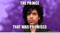 The Prince that was Promised: THE PRINCE  THAT WAS PROMISED  make ameme org The Prince that was Promised