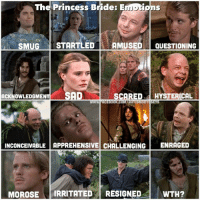Because, The Princess Bride. I found this in the abyss of my photos & forgot I had made it!: The Princess Bride: E  UnS  SMUG  STARTLED  AMUSED  QUESTIONING  ACKNOWLEDGMENT SAO  SCARED  d HYSTERICAL  TISM  INCONCEIVABLE APPREHENSIVE CHALLENGING  ENRAGED  MOROSE  IRRITATED  RESIGNED  WTH? Because, The Princess Bride. I found this in the abyss of my photos & forgot I had made it!