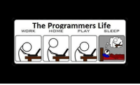 Programming Life Cycle: The Programmers Life  WORK  HOME  PLAY  SLEEP Programming Life Cycle