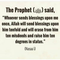 """Memes, Blessings, and The Prophet: The Prophet ()said,  """"Whoever sends blessings upon me  once, Allah will send blessings upon  him tenfold and will erase from him  ten misdeeds and raise him ten  degrees in status.""""  (Nasaa1)"""