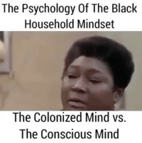 Memes, 🤖, and Good Times: The Psychology Of The Black  Household Mindset  The Colonized Mind vs.  The Conscious Mind Good Times... Michael Evans was telling the truth ... press play and finish watching the other clips on @sun_of_kemet_ page georgewashington michaelevans goodtimes 17thsoulja BlackIG17th