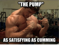 A Gym Memes classic.: THE PUMP  ASSATISFYING AS CUMMING A Gym Memes classic.