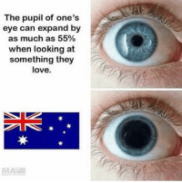 Love, Memes, and 🤖: The pupil of one's  eye can expand by  as much as 55%  when looking at  something they  love. Who else loves this country?