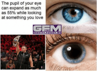 Love, Meme, and Memes: The pupil of your eye  can expand as much  as 55% while looking  at something you love  GE M  GRAVITY FOR GOT. ME I've already said it 10000 times but I'll say it one more time: the miz is GOLD. @mikethemiz themiz awesome wrestling prowrestling professionalwrestling meme wrestlingmemes wwememes wwe nxt raw mondaynightraw sdlive smackdownlive tna impactwrestling totalnonstopaction impactonpop boundforglory bfg xdivision njpw newjapanprowrestling roh ringofhonor luchaunderground pwg
