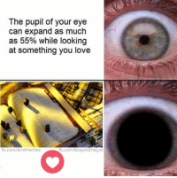 Love, fb.com, and Image: The pupil of your eye  can expand as much  as 55% while looking  at something you love  fb.com/dndmemes  b.com/leopoldthejust Btw, that was meant to be a stock image of tabletop rpgs, not necessarily me showing any favoritism to any particular edition, haha. Play what you like! :D  - Leopold the Just