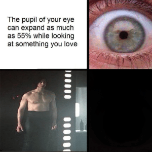 Love, Eye, and Looking: The pupil of your eye  can expand as much  as 55% while looking  at something you love me🚀irl
