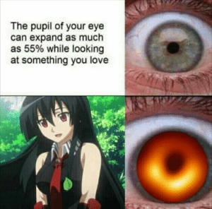Anime, Love, and Meme: The pupil of your eye  can expand as much  as 55% while looking  at something you love Akame ga kill meme #310