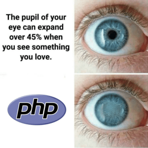 Love, Php, and Eye: The pupil of your  eye can expand  over 45% when  you see something  you love.  php It also works the other way around