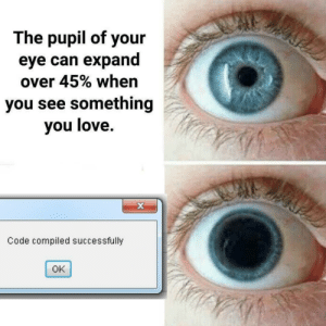 Love, Eye, and Code: The pupil of your  eye can expand  over 45% when  you see something  you love.  Code compiled successfully  OK Freeze That Moment