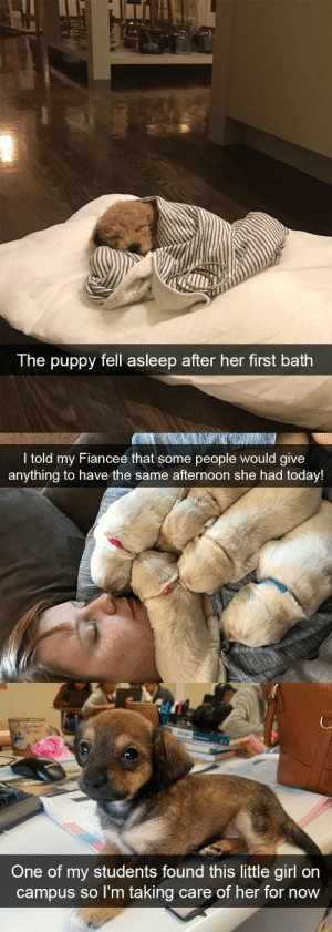 Target, Tumblr, and Girl: The puppy fell asleep after her first bath   I told my Fiancee that some people would give  anything to have the same afternoon she had today   One of my students found this little girl on  campus so l'm taking care of her forrn  ow More dog snapsvia @animalsnaps​