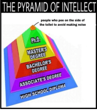 "Meme, School, and Masters: THE PYRAMID OF INTELLECT  people who pee on the side of  the toilet to avoid making noise  9  0  Ph.D.  2  MASTER'S  DEGREE  BACHELOR'S  DEGREE  ASSOCIATE'S DEGREE  HIGH SCHOOL DIPLOMA <p>New meme proving its versatility. Properly cropped template in the comments. via /r/MemeEconomy <a href=""https://ift.tt/2LQ6tNO"">https://ift.tt/2LQ6tNO</a></p>"