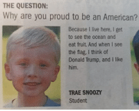 Cute, Donald Trump, and Memes: THE QUESTION:  Why are you proud to be an American?  Because I live here, I get  to see the ocean and  eat fruit. And when I see  the flag, I think of  Donald Trump, and I like  him.  TRAE SNO0ZY  Student Repost from @the.red.pill That's so cute! Raised right liberal Trump MAGA PresidentTrump NotMyPresident USA theredpill nothingleft conservative republican libtard regressiveleft makeamericagreatagain