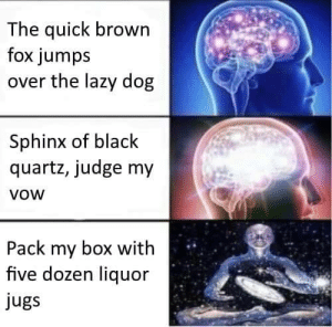 Dank, Lazy, and Memes: The quick brown  fox jumps  over the lazy dog  Sphinx of black  quartz, judge my  VOW  Pack my box with  five dozen liquor  jugs meirl by Fahrenheit_616 FOLLOW 4 MORE MEMES.